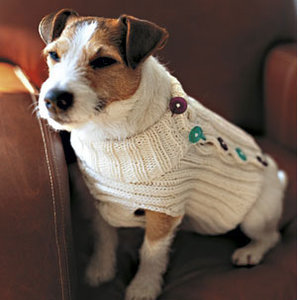 Free Easy Knitting Patterns For Medium Dog Jumpers : Christmas Sweaters for your Dog or Cat   knit and crochet   free patterns   G...