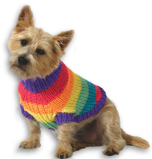 Knit a rainbow for st patrick s day free patterns - Knitting for dogs sweaters ...