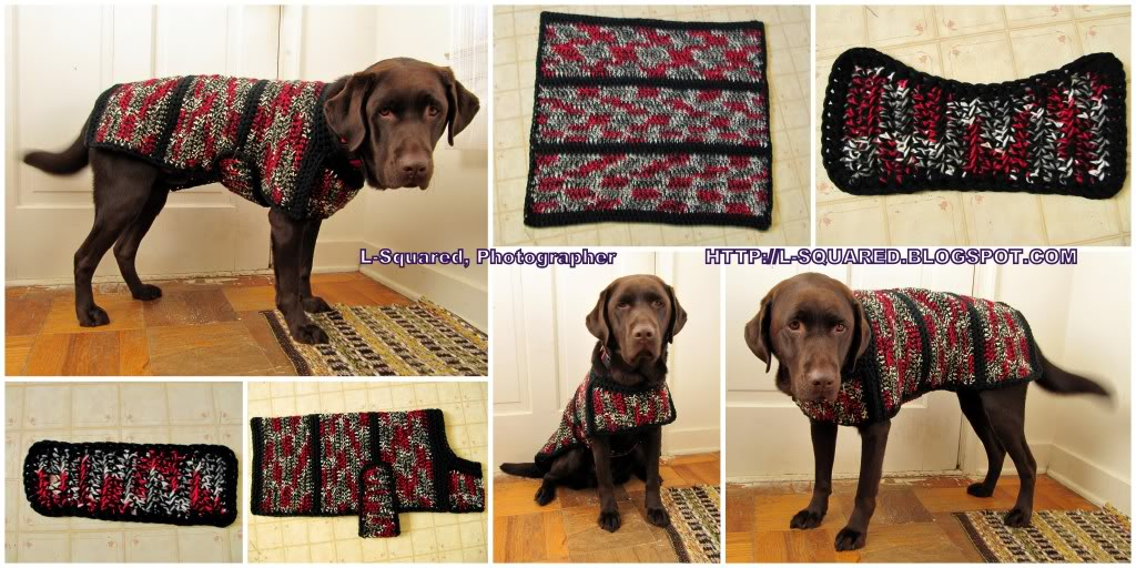 Free Pattern Crochet Dog Jacket : The Best Sweaters and Coats to Crochet for your Dog ? free ...