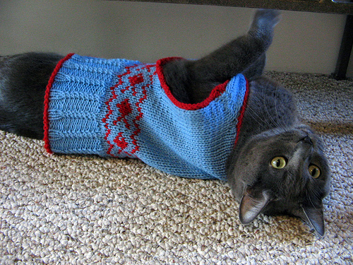 Knit a sweater for your cat free patterns grandmother - Knitted cat sweater pattern ...
