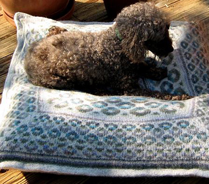 Knit a Cozy Bed for your Pet   free patterns   Grandmothers Pattern Book