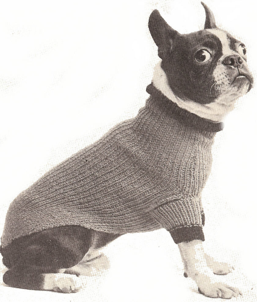Knitting Pattern Large Dog Sweater : The Best Sweaters and Coats to Knit for your Dog   free ...