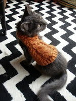 Knit a Sweater for your Cat   free patterns   Grandmother ...
