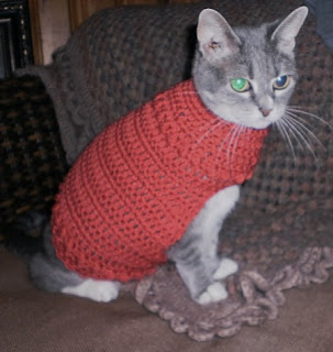 Knitting Pattern For Cat Sweater : Crochet a Sweater for Your Cat   free patterns   Grandmothers Pattern Book