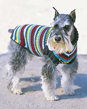 Free Crochet Granny Square Dog Sweater : The Best Sweaters and Coats to Crochet for your Dog ? free ...