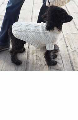 Knitting Pattern For Xs Dog Sweater : The Best Sweaters and Coats to Knit for your Dog   free ...