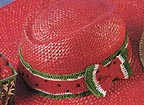 watermelonhatband
