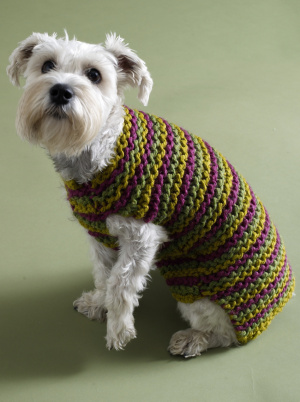 More Spring Sweaters To Knit For Your Dog Free Patterns
