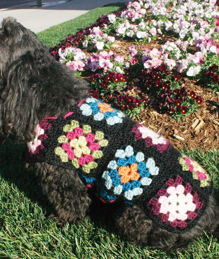 Free Crochet Pattern Dog Jumper : Crochet a Spring Sweater for Your Dog ? free patterns ...