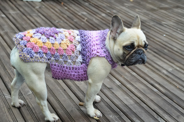 Crochet A Spring Sweater For Your Dog Free Patterns