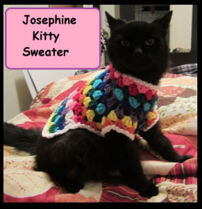 josephine-kitty-sweater-front-1