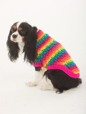 Free Knitted Dog Coat Patterns : More Spring Sweaters to Knit for Your Dog   free patterns   Grandmothers...