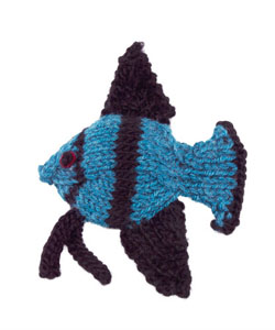 angelfish_small