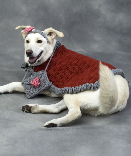 Crochet a Christmas Sweater, Hat, Collar or Scarf for Your Dog (or ...