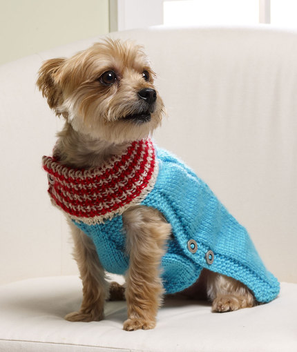 Knit a Christmas Sweater, Hat, Collar or Scarf for Your ...