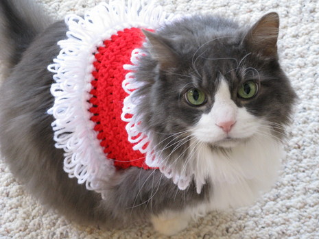 Knitting Pattern Cat Clothes : Crochet a Christmas Sweater, Hat, Collar or Scarf for Your ...