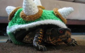 one-mean-turtle-e1368039537224