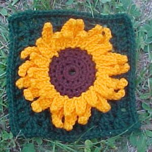 f101014sunflower