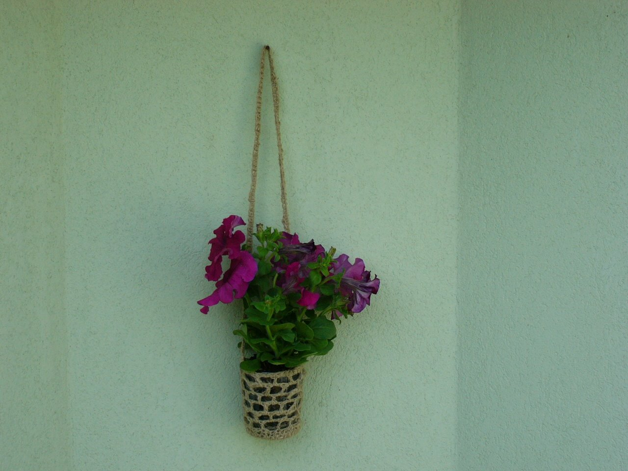 Crochet a Slipcover for Your Potted Plants ? 17 free ...