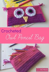 Crocheted-Owl-Pencil-Bag