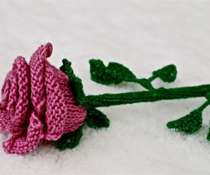 A Few More Rose Theme Patterns to Knit – 14 free patterns